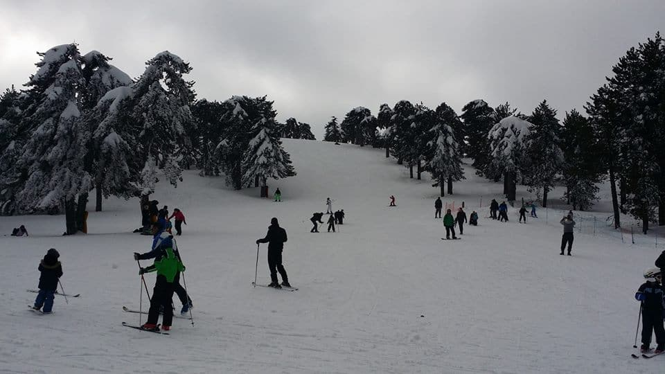 סקי בהרי הארודוס